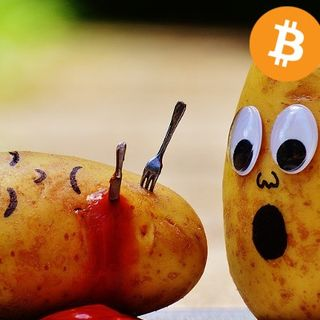 Hard Forks: Trusting the Bitcoin Network - YMB Podcast E133