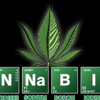 How To Know You Have A Marajuana Addiction Problem|You Smoke To Cope
