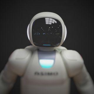 MH# 66 Robots Jueces