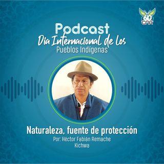 Naturaleza, fuente de protección
