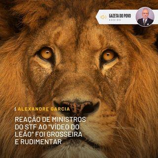 """Reação do STF ao """"vídeo do leão"""" de Bolsonaro foi grosseira e rudimentar"""