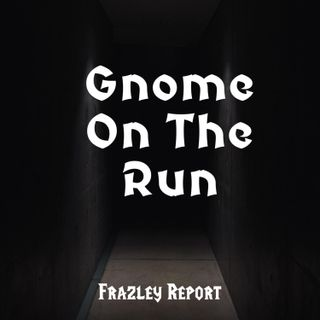 Gnome On The Run