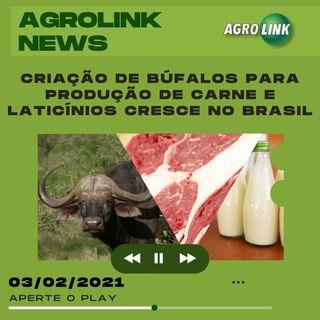 Agrolink News - Destaques do dia 03 de fevereiro