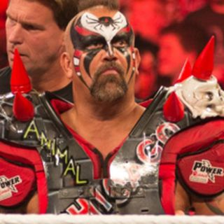 Road Warriors The Life and Death of Wrestling's Most Dominant Tag Team (2005)