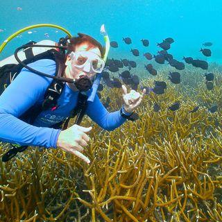 Vital Signs Podcast #2: Tripp Funderburk-Roatan Reef Restoration