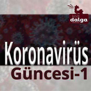 Koronavirüs güncesi - 1