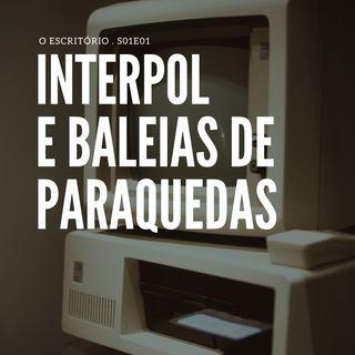 Interpol e baleias de paraquedas