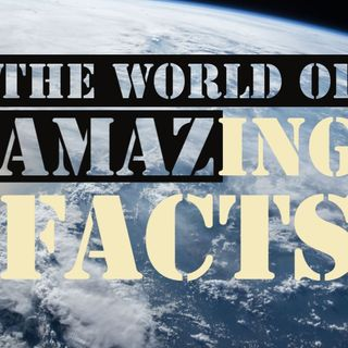A World of Amazing Facts