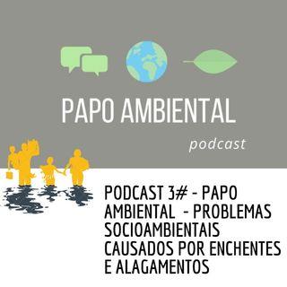Podcast #3 - Problemas socioambientais causados por enchentes e alagamentos