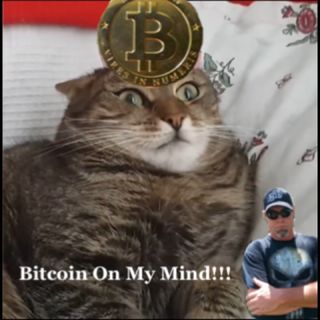 Bitcoin On My Mind...