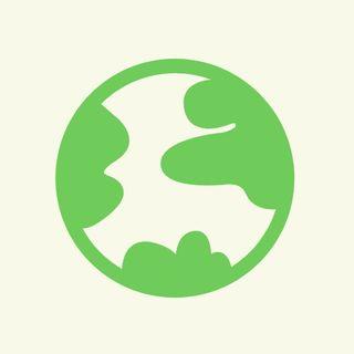 Mleko krowie a roślinne