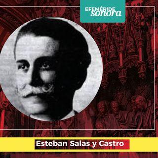 Documental sonoro: Tras la Huella de un Maestro, Esteban Salas y Castro (Radio Camoa 2012)