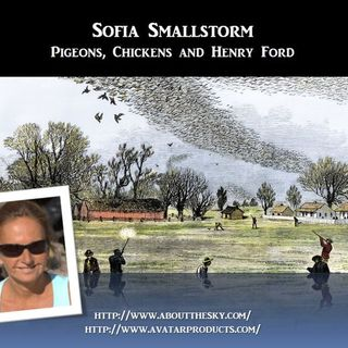 Sage of Quay Radio - Sofia Smallstorm - Pigeons, Chickens and Henry Ford