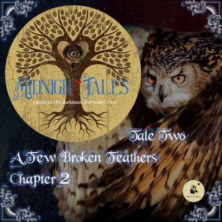 Midnight Tales - Two - A Few Broken Feathers - Chapter 2