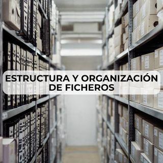 41 Estructura y organizacion de ficheros
