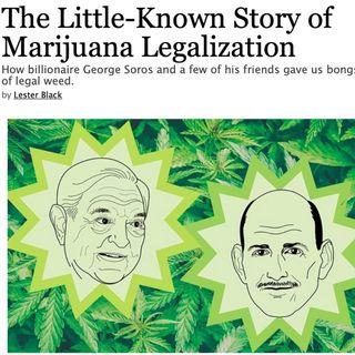 The Untold Story of Marijuana Legalization (2019)