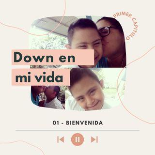 DOWN WN MI VIDA: BIENVENIDA