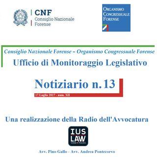 Notiziario n. 13 CNF/OCF - Ufficio di Monitoraggio Legislativo