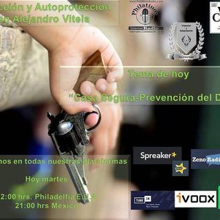 Proteccion y Autoproteccion | Alejandro Vitela