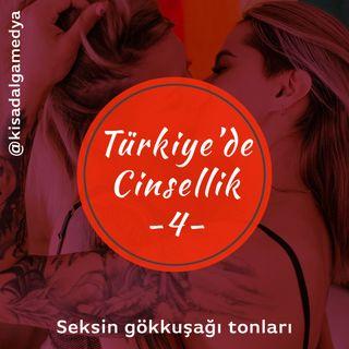 Türkiye'de cinsellik 4: Seksin gökkuşağı tonları