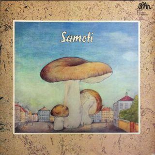 Sameti - Big Fat Brother Joint