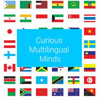 #1 Introducing Curious Multilingual Minds