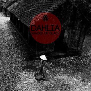Dahlia - Enma