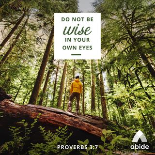 Wise in Your Own Eyes