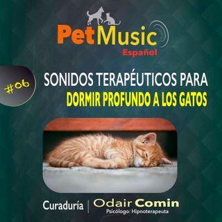 #06 Sonidos Terapéuticos para Dormir Tranquilos a los Gatos