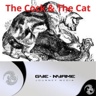 FFGF - The Cat & The Cock