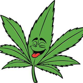 The 420 Way