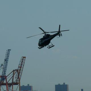 Plaga de helicópteros