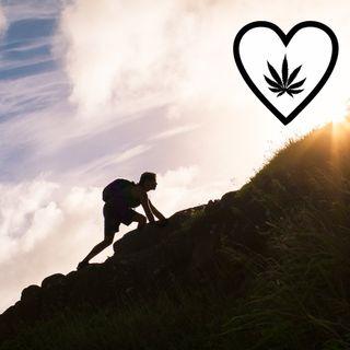 Cannabis e cancro: una battaglia di amore e speranza
