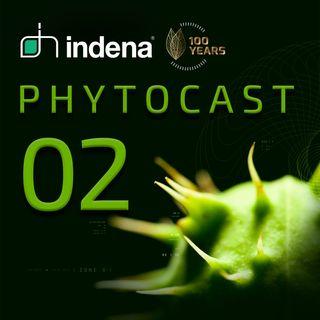 Phytocast 02: Qualità e affidabilità