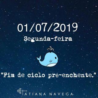 Novela dos ASTROS #24 - 01/07/2019
