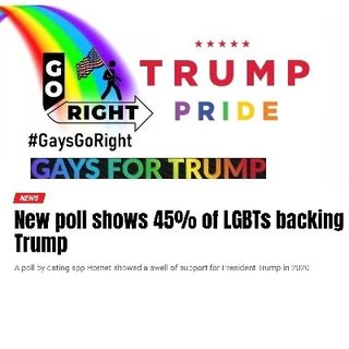 We Told You So .. New poll shows 45 percent of LGBTs backing Trump