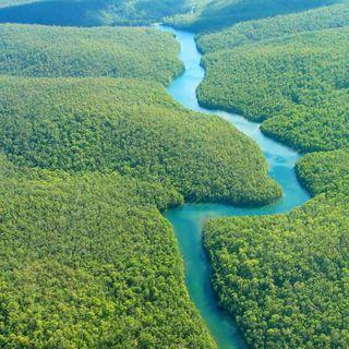 Dal Sinodo sull'Amazzonia, l'ecologia integrale della Chiesa