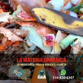 NUESTRO OXÍGENO Importancia de la materia orgánica en el planeta - Ing. Mauricio Madriñán