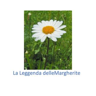 La Leggenda delle Margherite