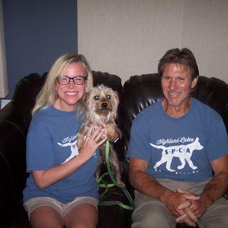 It's Highland Lakes SPCA Day at KBEY. Meet Rhett!