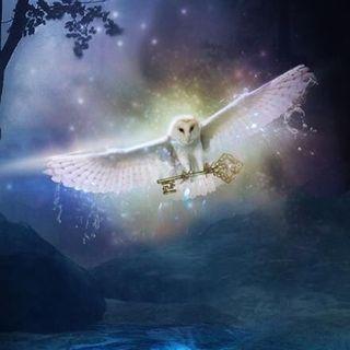 Buongiorno 😃💖🌈☀️stamattina leggiamo la tavola III di Thoth! ✨