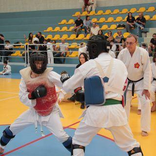 la mia esperienza marziale (ep.1): karate ShotoKAI