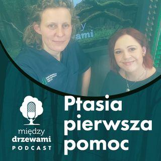 Między Drzewami #70 Ptasia pierwsza pomoc [dr Agnieszka Czujkowska]