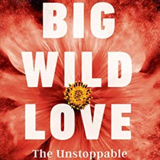 Jill Sheree Murray Releases The Book Big Wild Love