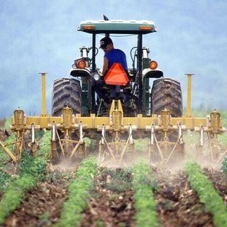 Suolo, clima, agricoltura gli Usa aprono al mercato del carbonio
