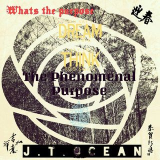 THE PHENOMENAL PURPOSE