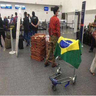 Rescatan a 91 mexicanos varados en Brasil