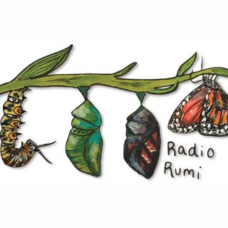 Radio Rumi Program 23: Homeless like a Fly