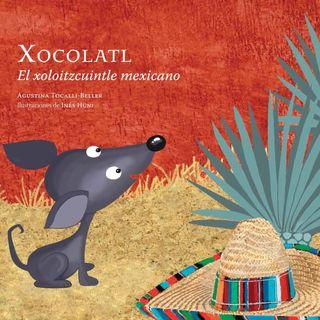Tras Las Huellas.  Xocolatl El Xoloitzcuincle Méxicano.
