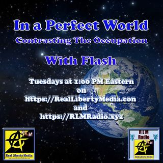 In A Perfect World Podcast - 2019-11-05 - Civil Symmetry and Artful Communication with Flash & VinE